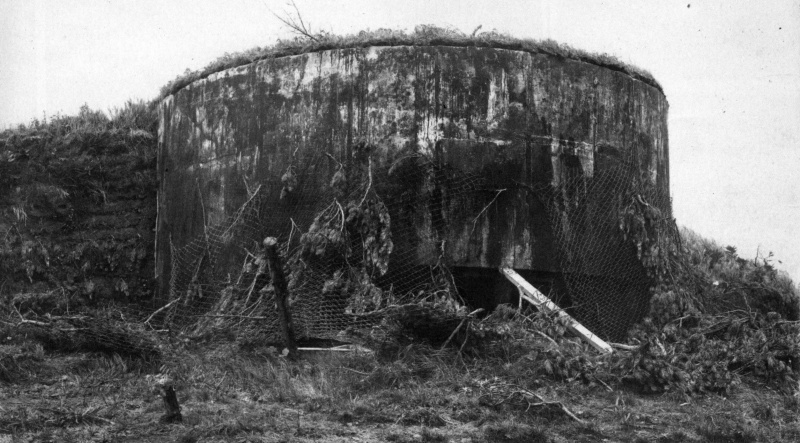 Типичный ДОТ Хайларской крепости